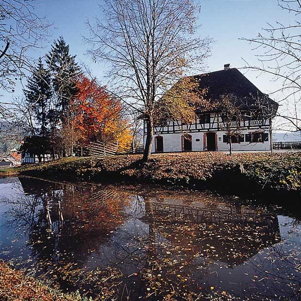 Herbst im Westallgäu typisches Haus am Weiher