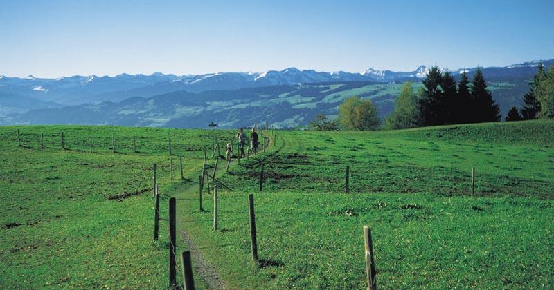 Höhenweg Scheidegg